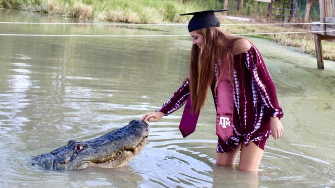 Today's news headlines, A Girl Trying to take selfie with an aligator from Texas